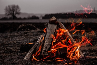 What to do when you get sick of cooking for your family outdoors